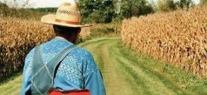 Köye Dönüş Kredisi ile Devletten Hibe ve Faizsiz Kredi İmkanı